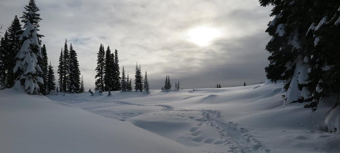 snow-cave