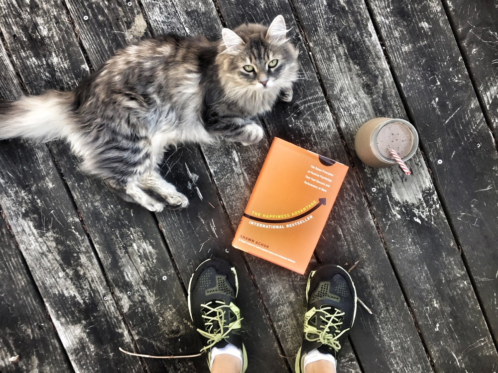 Starting the day with good intention - a workout, a good book, a healthy smoothie and, of course, an adorable cat.