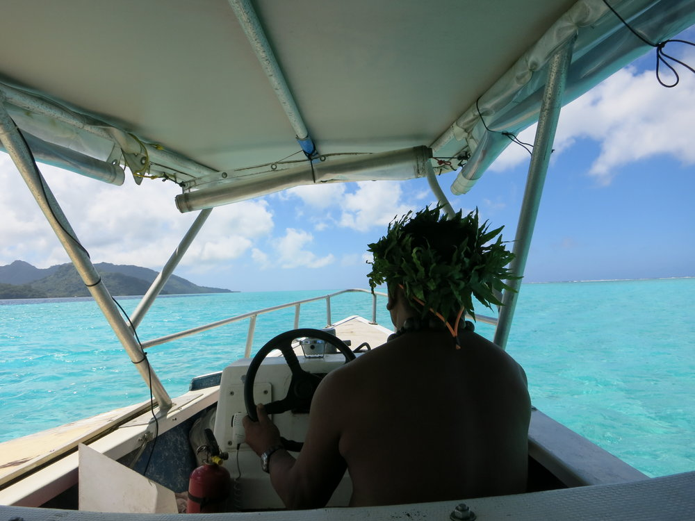 View from our outrigger canoe lagoon tour.