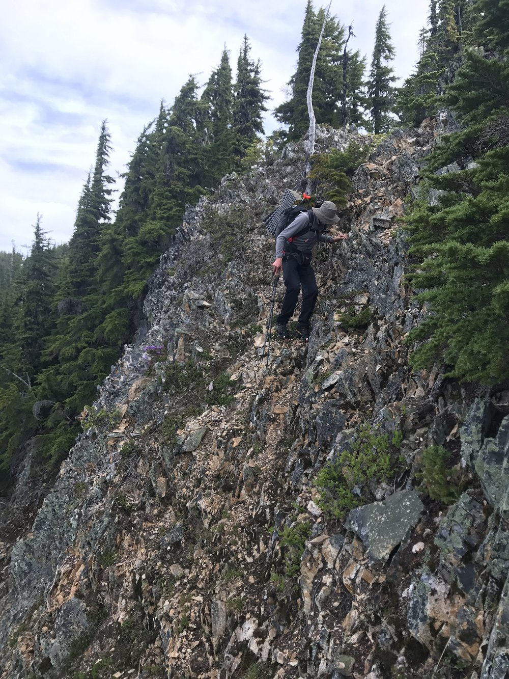 Using poles to cautiously descend a tricky scrambly section.